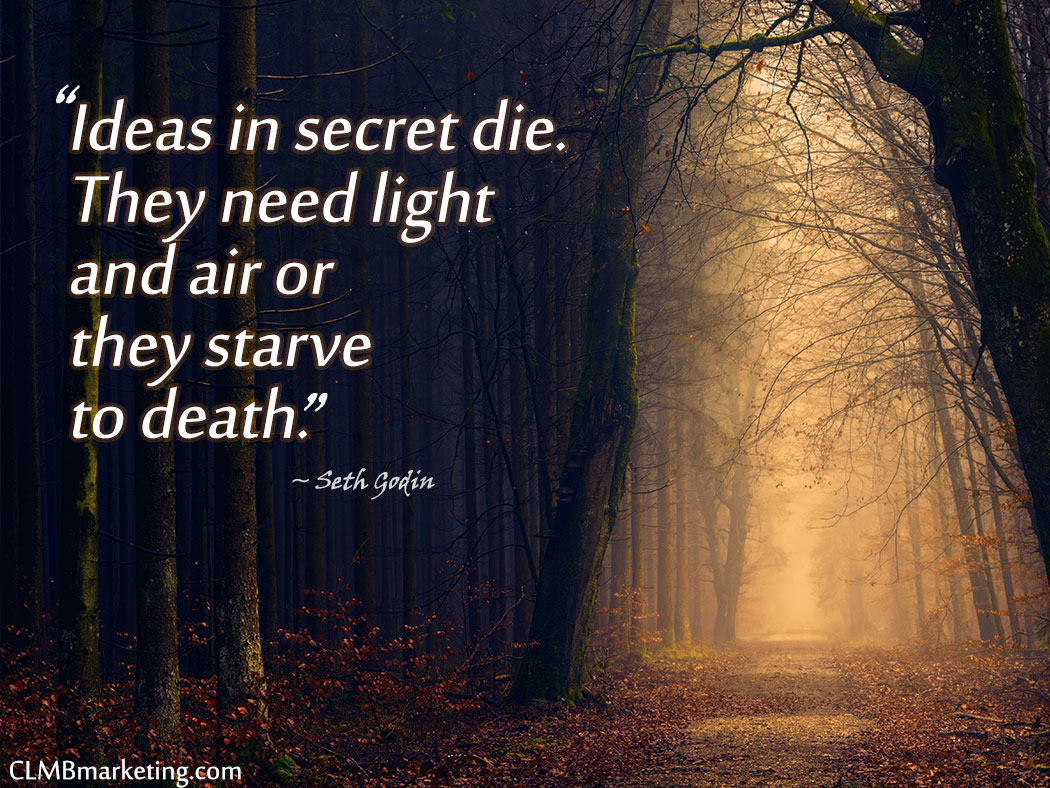 Business Motivational Quotes - Ideas in secret die. They need light and air or they starve to death. – Seth Godin